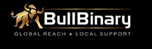 bullbinary_logo