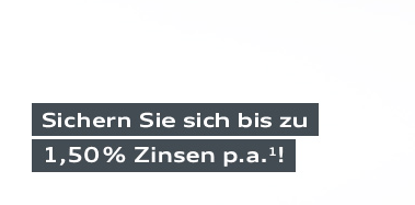 audi_zinsen